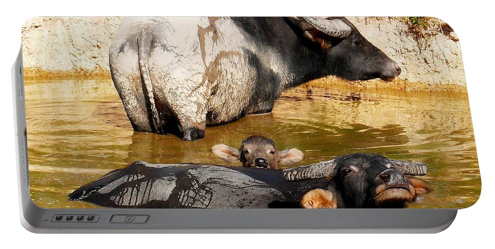 Raw And Real Northern Territory Series By Lexa Harpell Portable Battery Charger featuring the photograph Water Buffalo Family Portrait by Lexa Harpell