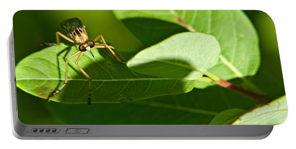 Insect Portable Battery Charger featuring the photograph Bug Eyes by Douglas Barnett