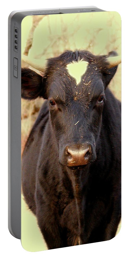 Animals Portable Battery Charger featuring the photograph Bull by Dorothy Lee