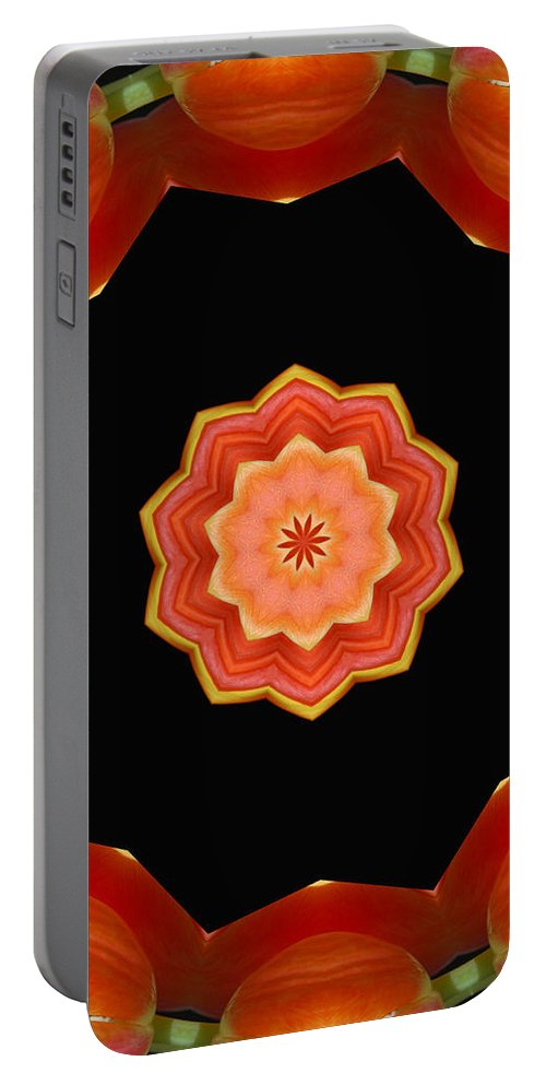 Modern Portable Battery Charger featuring the digital art Bullseye by Donna Blackhall