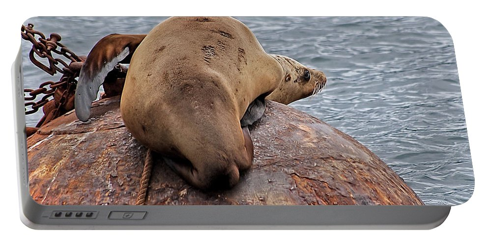 Sea Lion Portable Battery Charger featuring the photograph Buoy Break by Jay Billings
