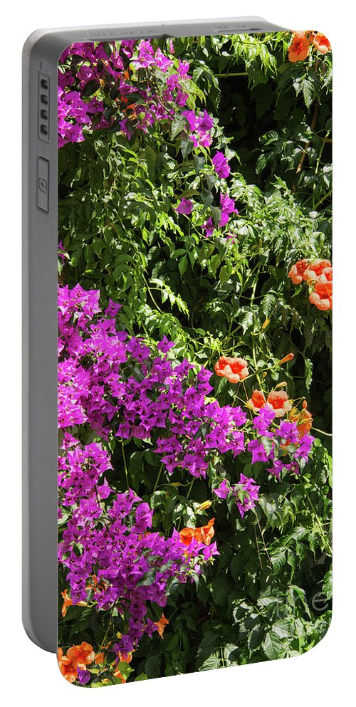 Burgazada Island Portable Battery Charger featuring the photograph Burgazada Island Flower Color by Bob Phillips