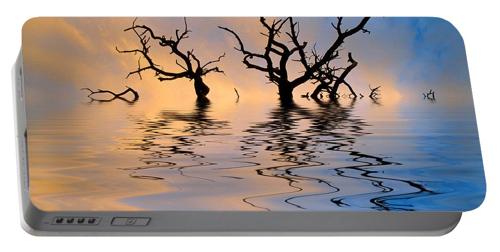 Original Art Portable Battery Charger featuring the photograph Slowly Sinking by Jerry McElroy