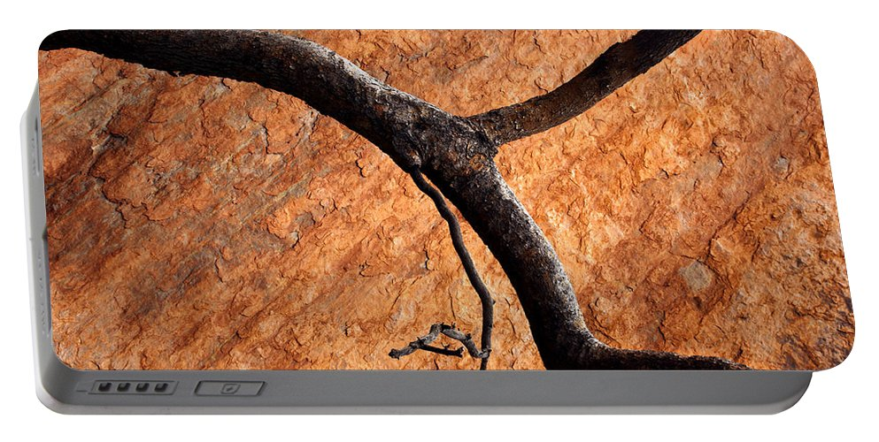 Gum Tree Portable Battery Charger featuring the photograph Burnt Orange by Mike Dawson