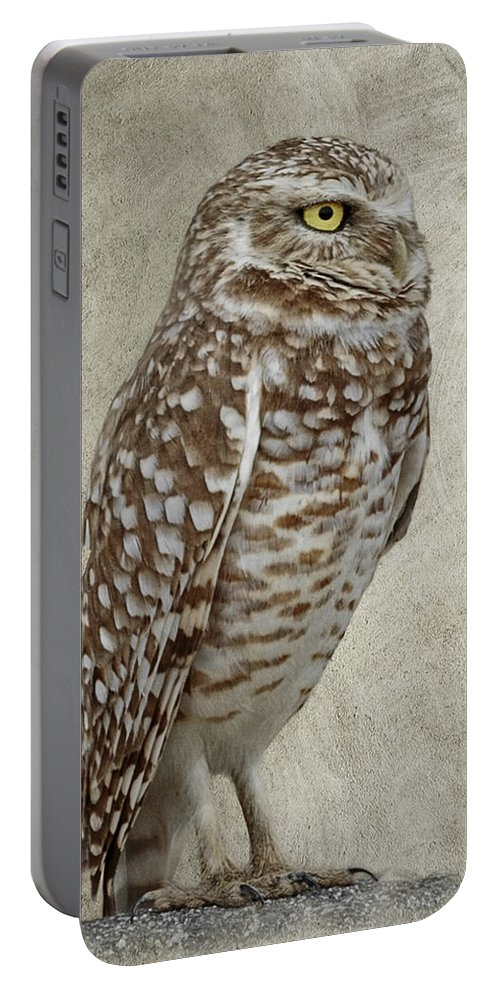 Burrowing Owl Portrait Portable Battery Charger featuring the photograph Burrowing Owl Portrait by Wes and Dotty Weber