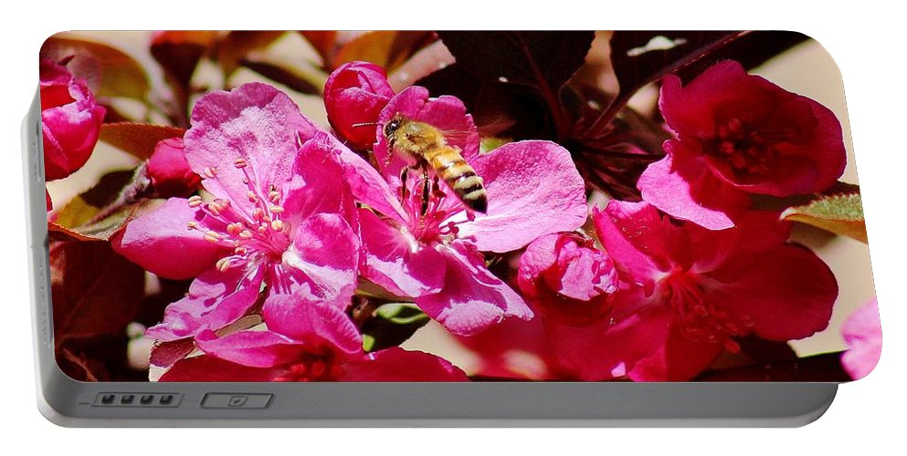 Flora Portable Battery Charger featuring the photograph Busy As A Bee 031015 by Edward Dobosh