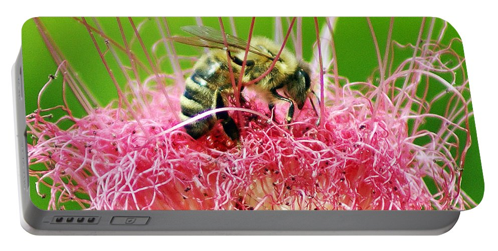 Nature Portable Battery Charger featuring the photograph Busy Bee by Holly Kempe