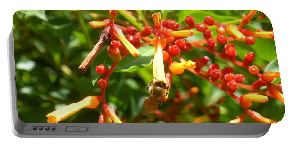 Bee Portable Battery Charger featuring the photograph Busy Bee by Maria Bonnier-Perez