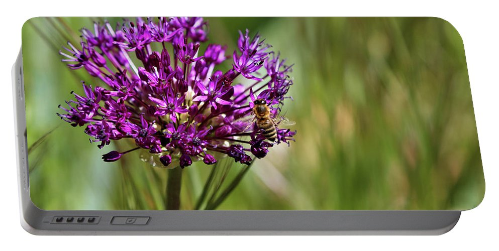 Purple Flower Bee Portable Battery Charger featuring the photograph Busy Bee by Rosalyn Zacha