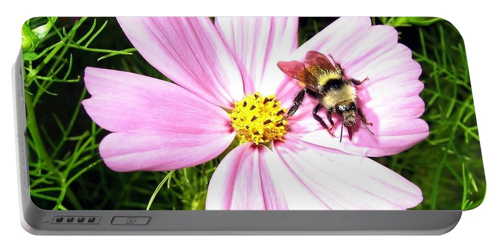 Bee Portable Battery Charger featuring the photograph Busy Bee by Will Borden