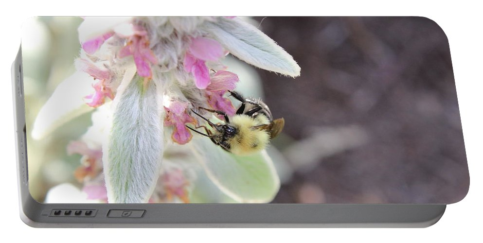 Bumble Portable Battery Charger featuring the photograph Busy Bumble by Alexis Ketner