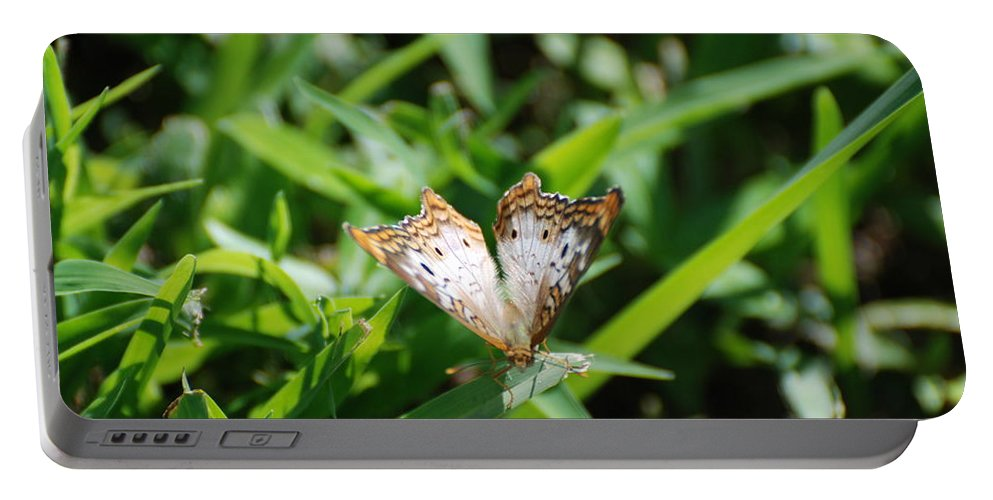Butterfly Portable Battery Charger featuring the photograph Butter Fly by Rob Hans