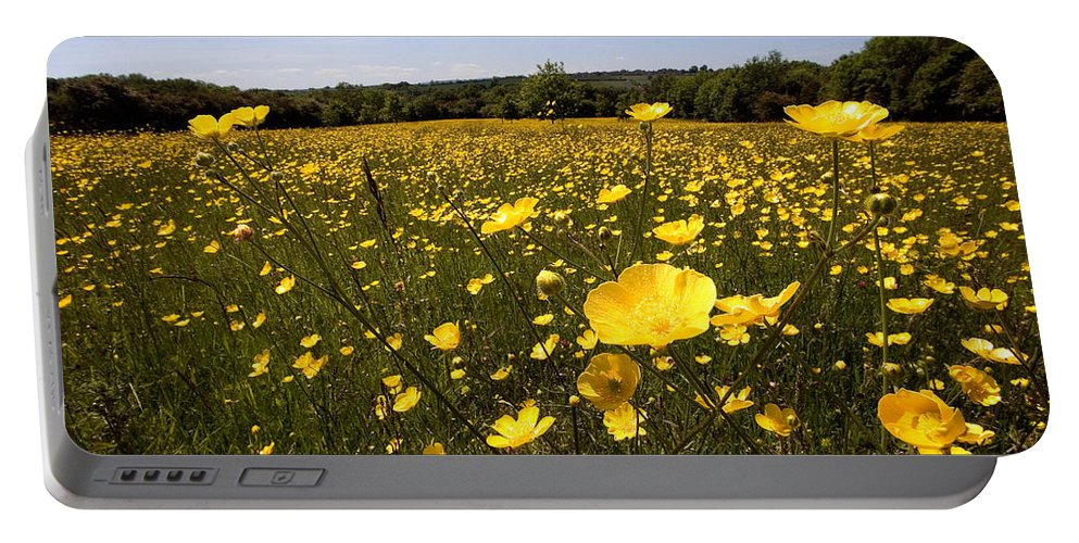 Buttercups Portable Battery Charger featuring the photograph Buttercup Field by Bob Kemp