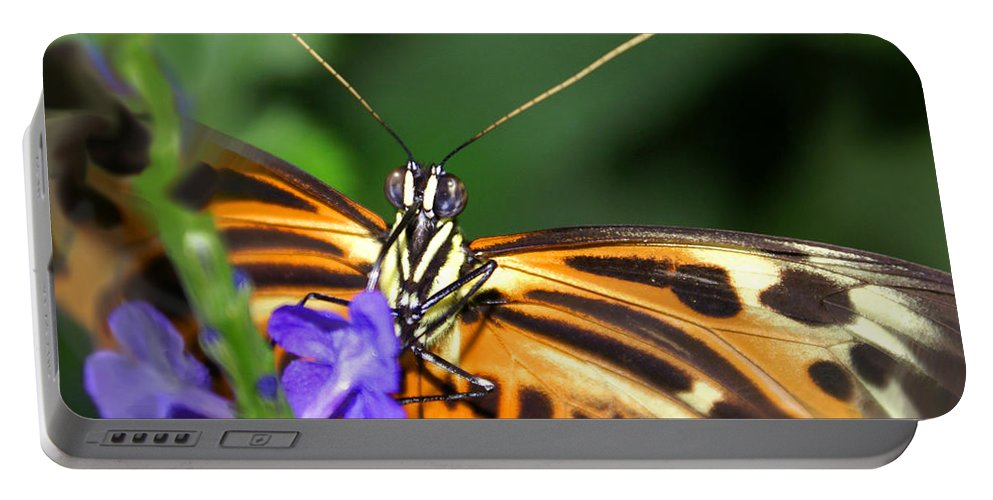 Butterfly Portable Battery Charger featuring the photograph Butterfly 2 Eucides Isabella by Heather Coen