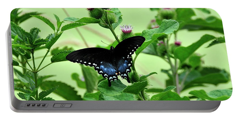 Butterfly Portable Battery Charger featuring the photograph Butterfly And Mossy Pond by David Arment