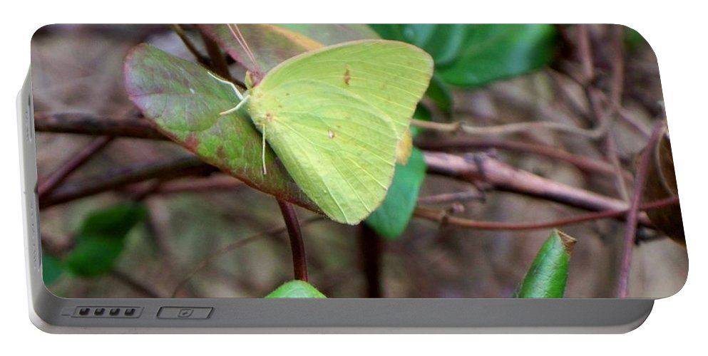 Butterfly Portable Battery Charger featuring the photograph Butterfly Camouflage by Betty Northcutt