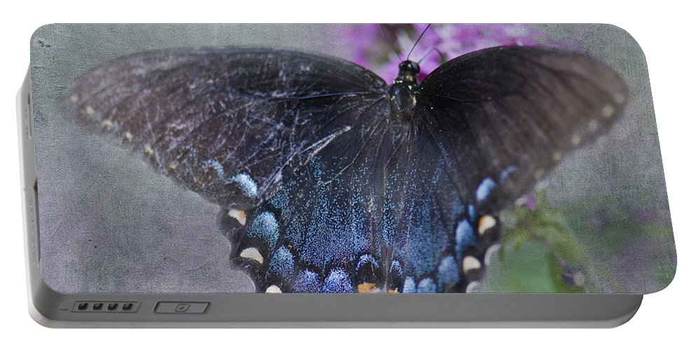 Pipevine Swallowtail Portable Battery Charger featuring the photograph Butterfly Dance by Betty LaRue