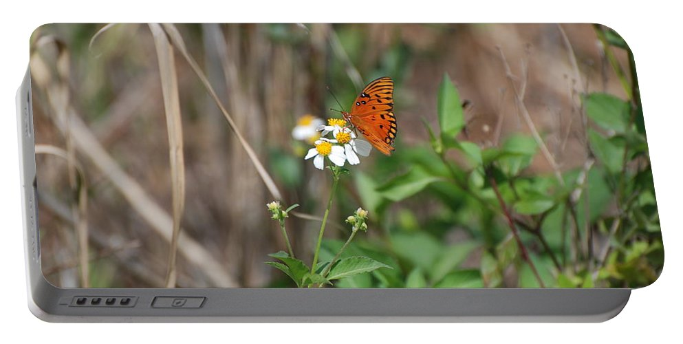 Butterfly Portable Battery Charger featuring the photograph Butterfly Flower by Rob Hans