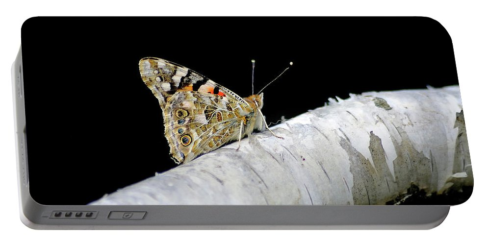Farfalla Portable Battery Charger featuring the photograph Butterfly by Ilaria Andreucci