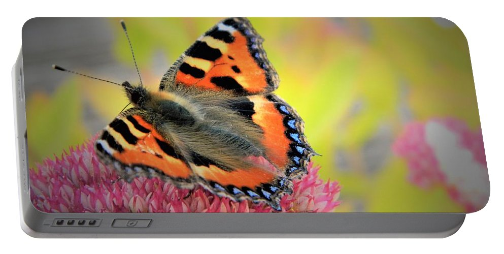 Nature Portable Battery Charger featuring the photograph Butterfly In Bloom by MichealAnthony
