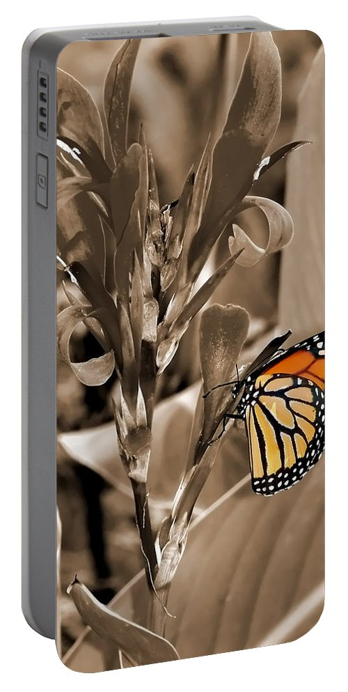 Macro Portable Battery Charger featuring the photograph Butterfly In Sepia by Lauren Radke
