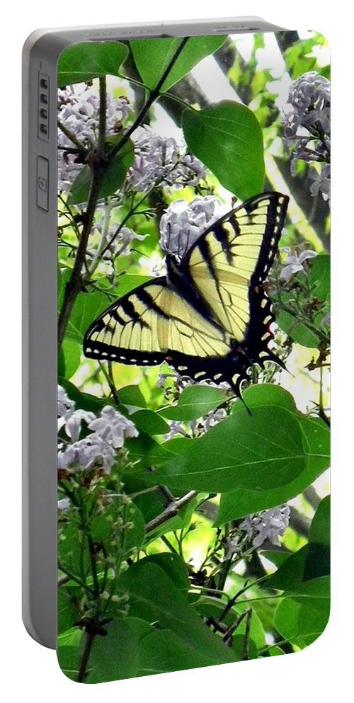 Butterfly Portable Battery Charger featuring the photograph Butterfly In The Lilac No. 1 by T Cook