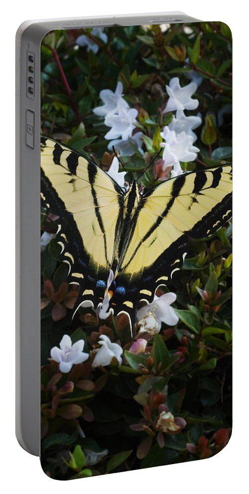 Butterfly Portable Battery Charger featuring the photograph Butterfly by Kelley King