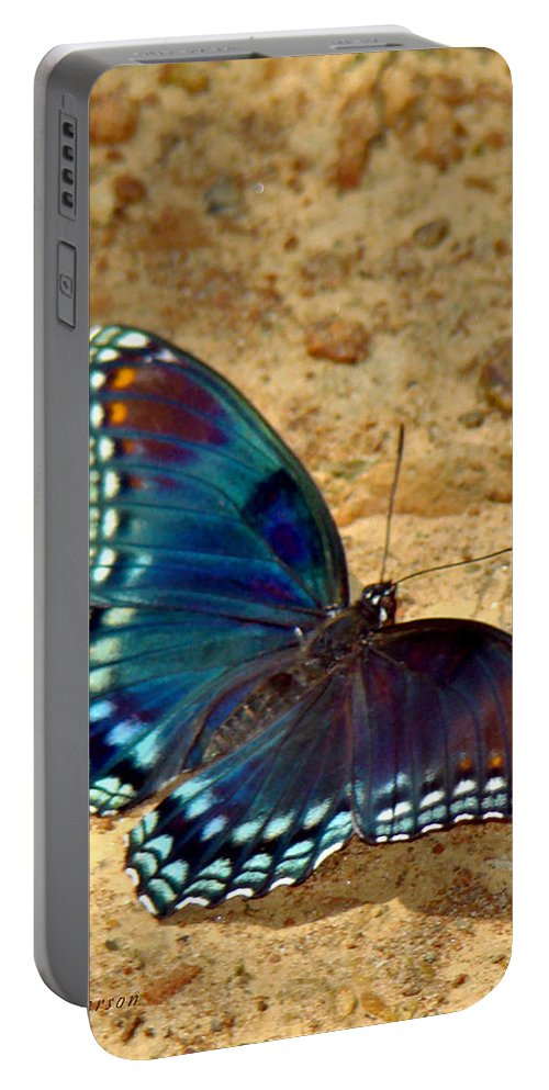 Red Spotted Purple Portable Battery Charger featuring the photograph Butterfly Landing by Terry Anderson