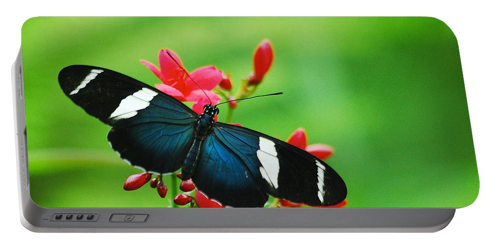 Wildlife Portable Battery Charger featuring the photograph Butterfly by Michael Peychich