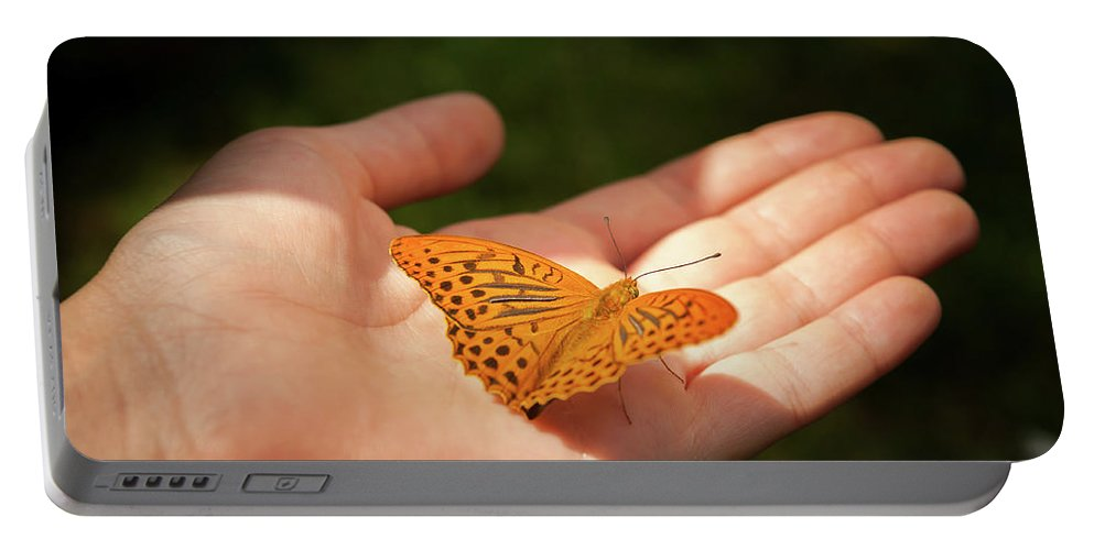 Hand Portable Battery Charger featuring the photograph Butterfly On A Childs Hand by Stefan Rotter