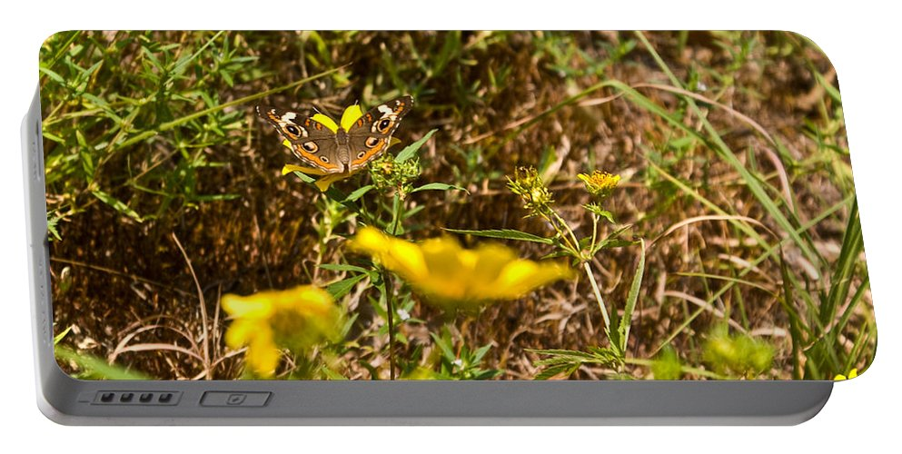 Butterfly Portable Battery Charger featuring the photograph Butterfly On Flower by Douglas Barnett