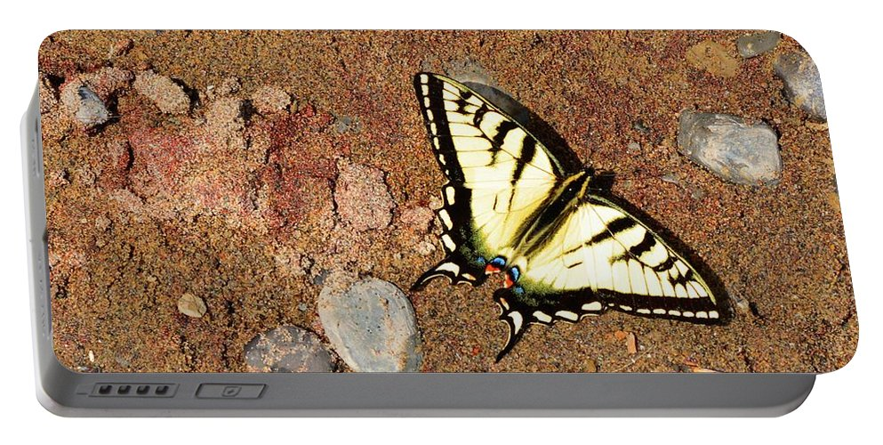 Butterfly Portable Battery Charger featuring the photograph Butterfly On The Beach by Lyle Crump
