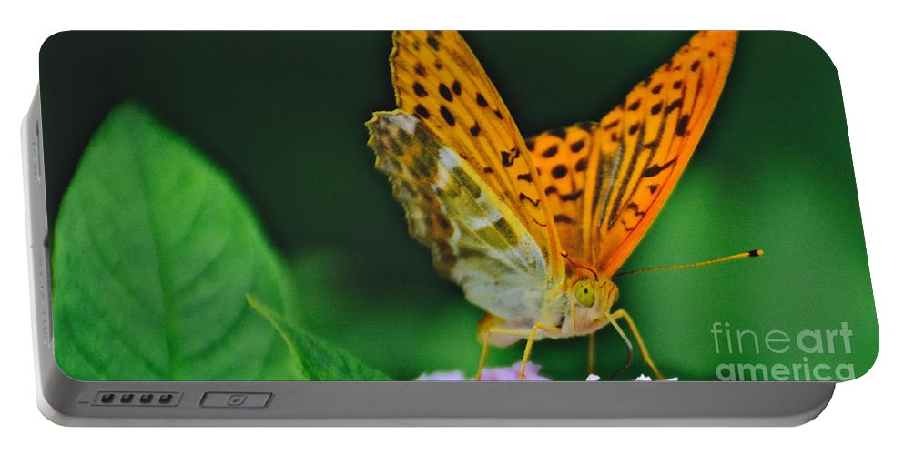 Butterfly Portable Battery Charger featuring the photograph Butterfly Pose by Photos By Zulma