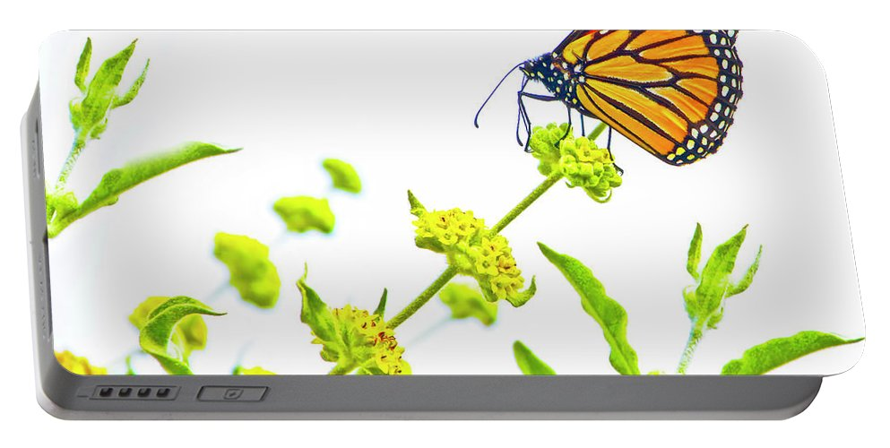 Butterfly Portable Battery Charger featuring the photograph Butterfly Series #10 by Edita De Lima