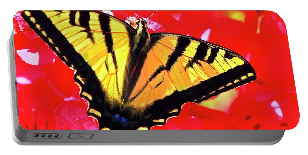 Butterfly Portable Battery Charger featuring the photograph Butterfly Series #11 by Edita De Lima