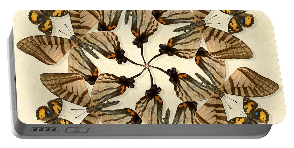 Butterfly Portable Battery Charger featuring the photograph Butterfly Wheel Dance by Melissa A Benson