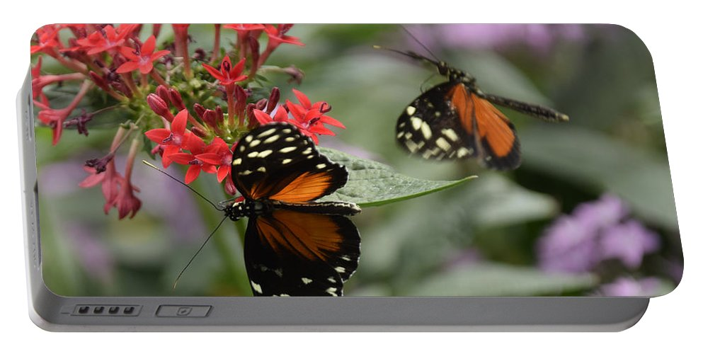 Butterfly Portable Battery Charger featuring the photograph Butterfly2 by Ron Hebert