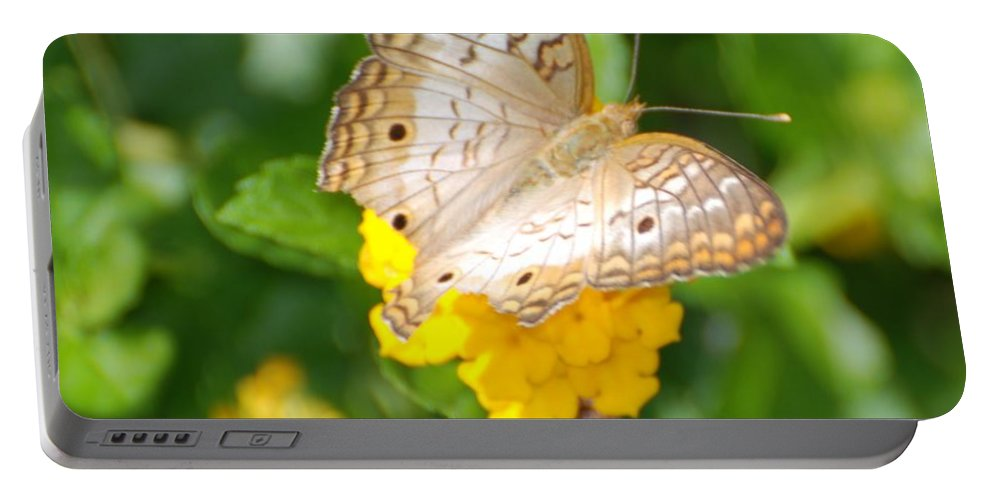 Butterfly Portable Battery Charger featuring the photograph Butterflywith Dots by Rob Hans