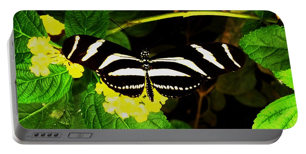 Butterfly Portable Battery Charger featuring the photograph Butterly by Laura Greco