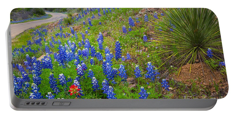 America Portable Battery Charger featuring the photograph By The Roadside by Inge Johnsson