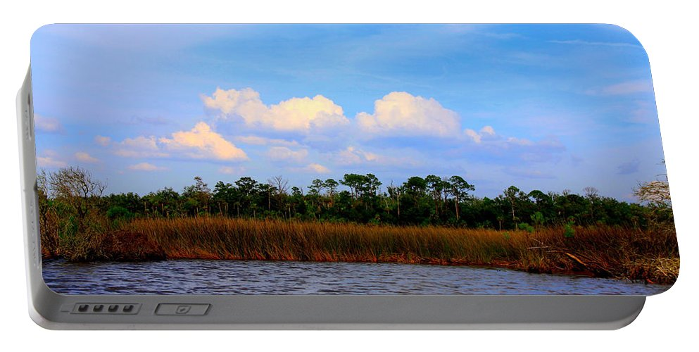 Cabbage Palms Portable Battery Charger featuring the photograph Cabbage Palms And Salt Marsh Grasses Of The Waccasassa Preserve by Barbara Bowen