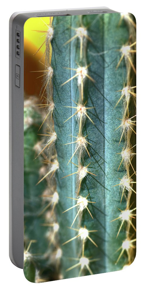 Cactus Portable Battery Charger featuring the photograph Cactus 3 by Jim And Emily Bush