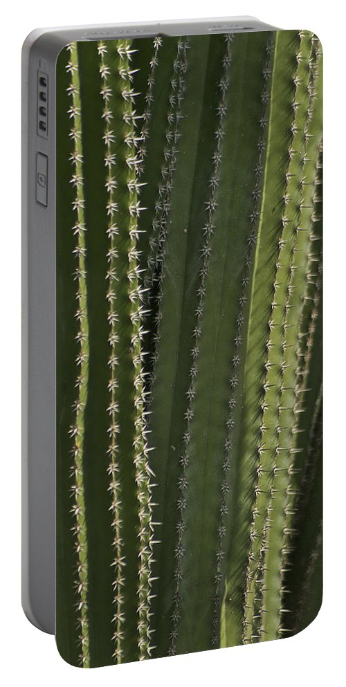 Cactus Portable Battery Charger featuring the photograph Cactus Abstract by Michael Peychich
