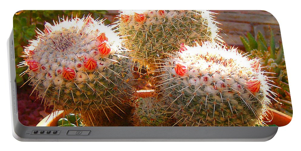 Landscape Portable Battery Charger featuring the photograph Cactus Buds by Amy Vangsgard