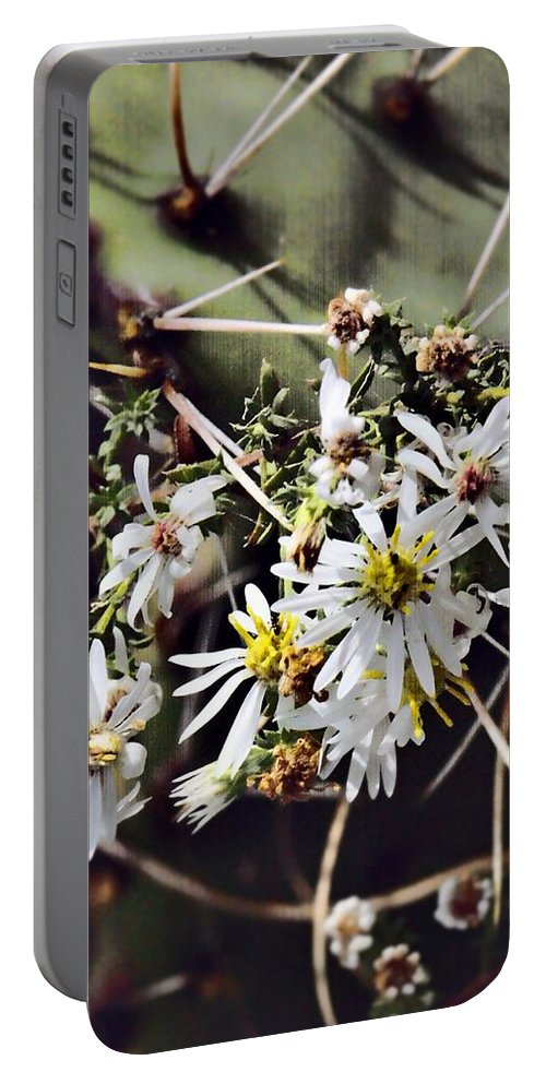 Cactus Portable Battery Charger featuring the photograph Cactus Flowers by Scott Wyatt