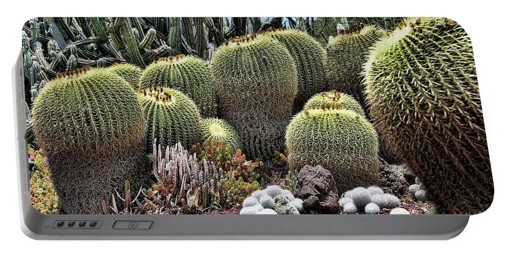 Nature Portable Battery Charger featuring the photograph Cactus Galore by Chuck Kuhn