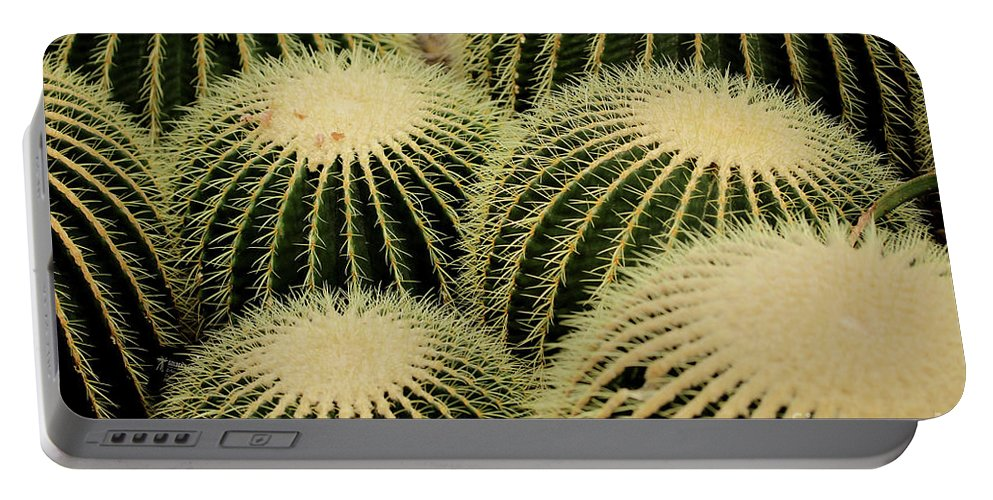 Cactus Portable Battery Charger featuring the photograph Cactus Party by Douglas Milligan