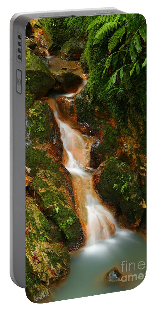 Azores Portable Battery Charger featuring the photograph Caldeira Velha Park by Gaspar Avila