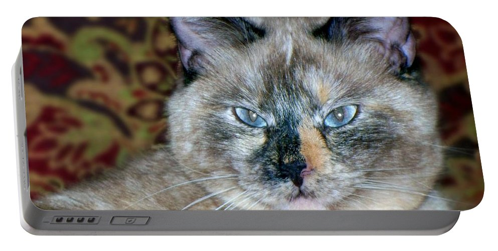 Animals Portable Battery Charger featuring the photograph Cali-mese by Betty Northcutt