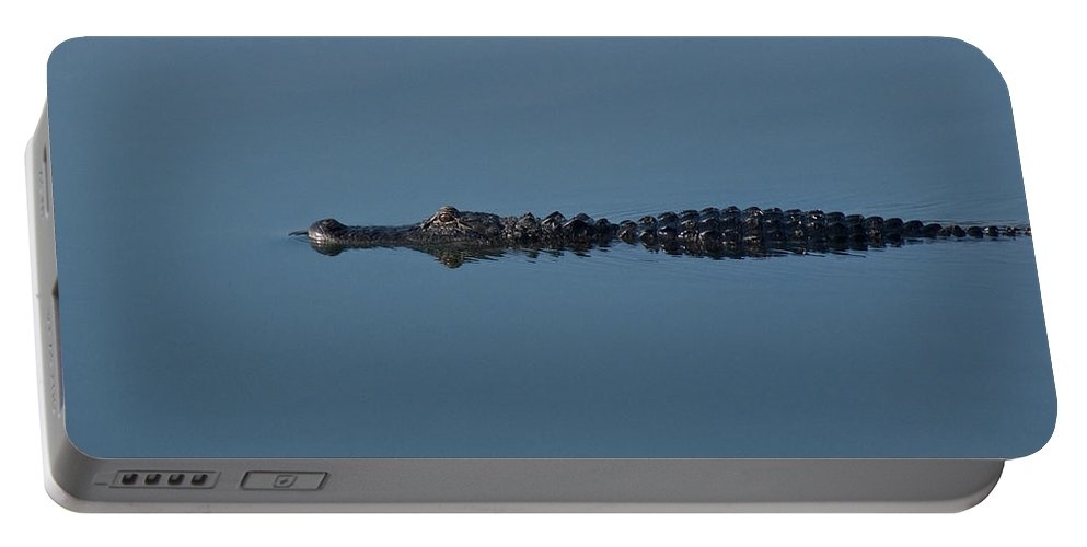 Alligator Portable Battery Charger featuring the photograph Calm Water Cruise by Steven Sparks